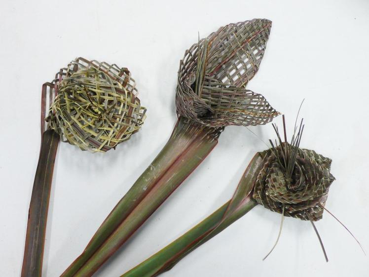 Flax Flower 3