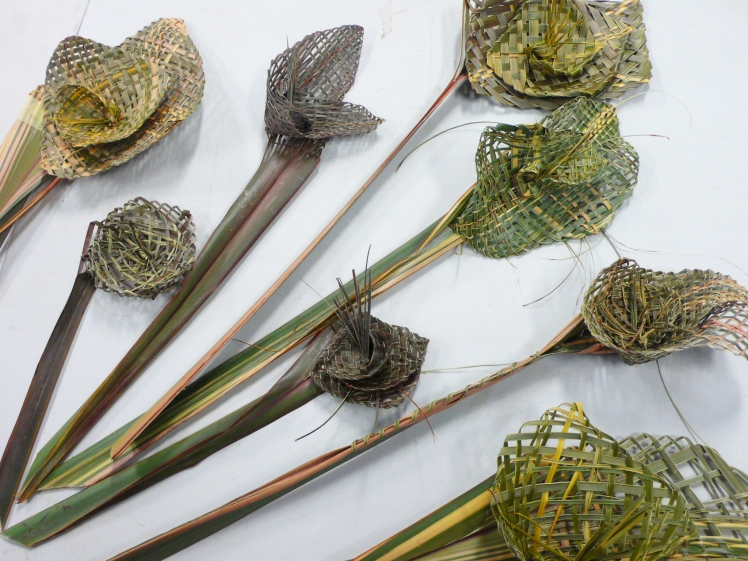 Flax Flowers 1